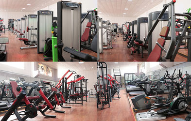 Foshan Laijian Fitness Equipment Factory