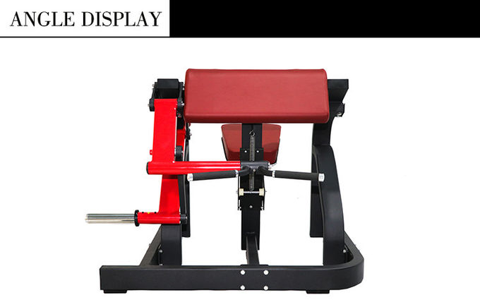 Body Fitness Hammer Strength Plate Loaded Equipment / Biceps Curl Machine